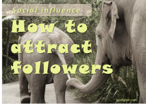 Social influence: 4 tips for building a loyal following from a guy who blew it