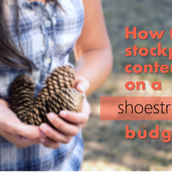 How this nonprofit is stockpiling content on a shoestring